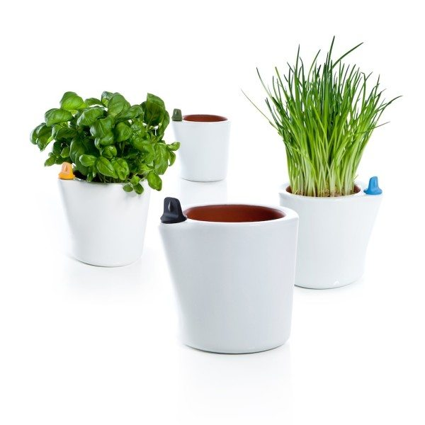 self-watering-flower-pot-1