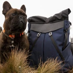 Frenchie Co. Speed Backpack
